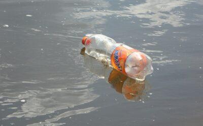Plastic vissen in de Eem